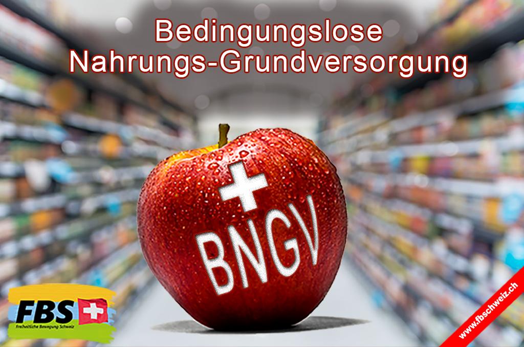 bngv_flyer_-de_v1_1024x_x_72.png